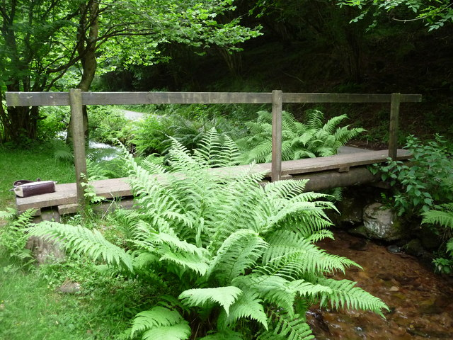 Exmoor : Footbridge over East Water