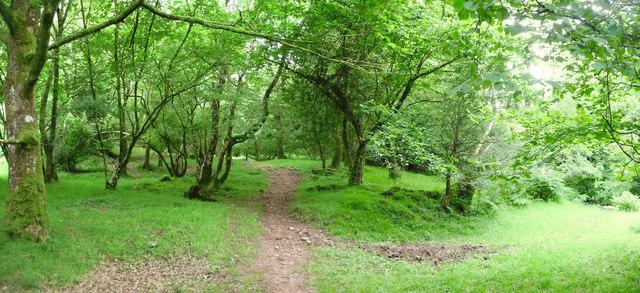 Exmoor : Dunkery Beacon Path