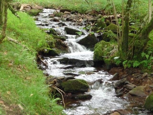 Exmoor : East Water