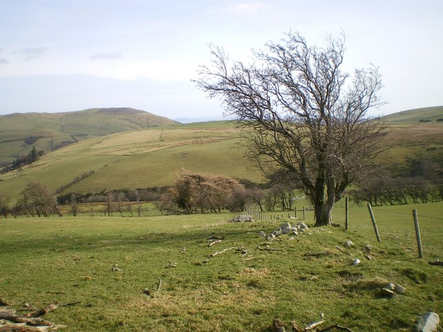 Field boundary on the hillside
