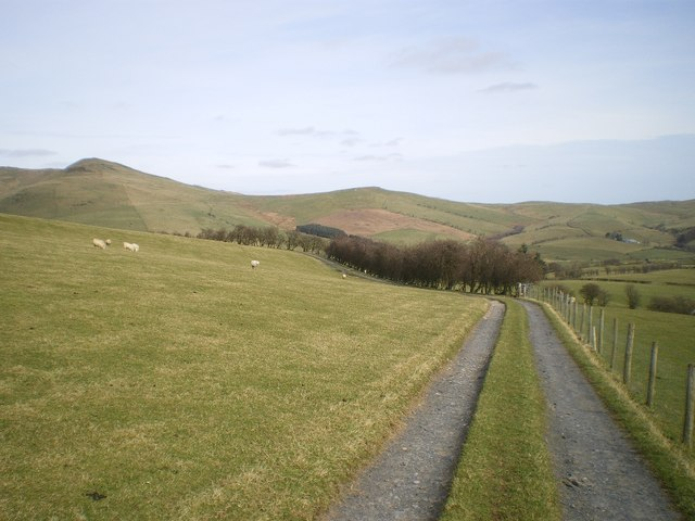 The farm track looking away from Bryn-gwyn