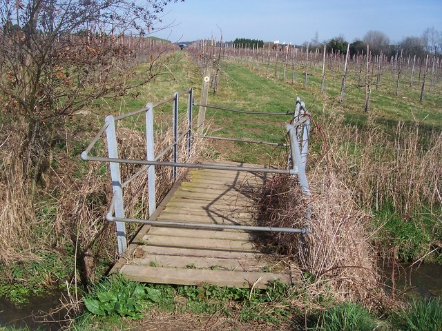 Footbridge on Greensand Way