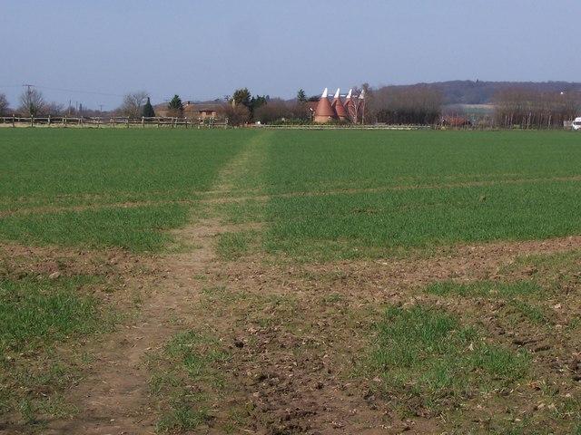 Footpath to Court Lane