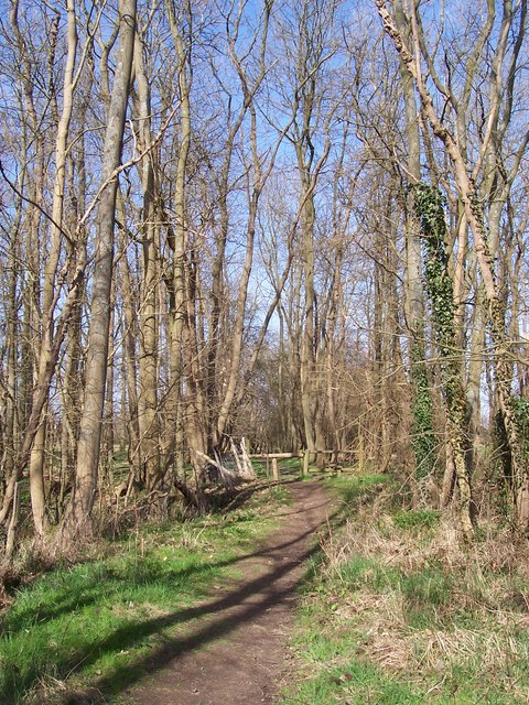 Footpath through Poors Mead
