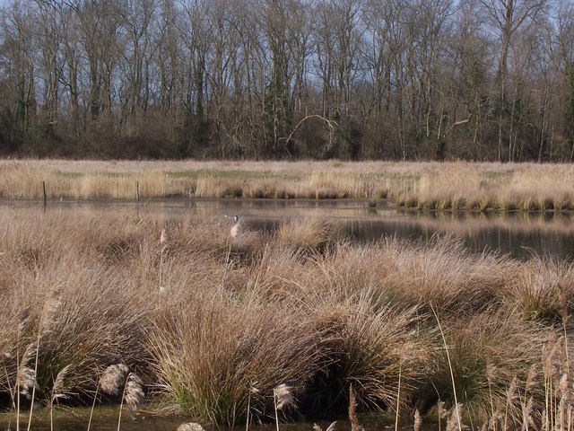 Nature Reserve in Former Gravel Pit