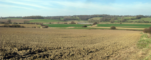 Fields towards Tillingham