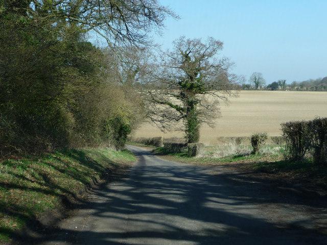 Northside Lane