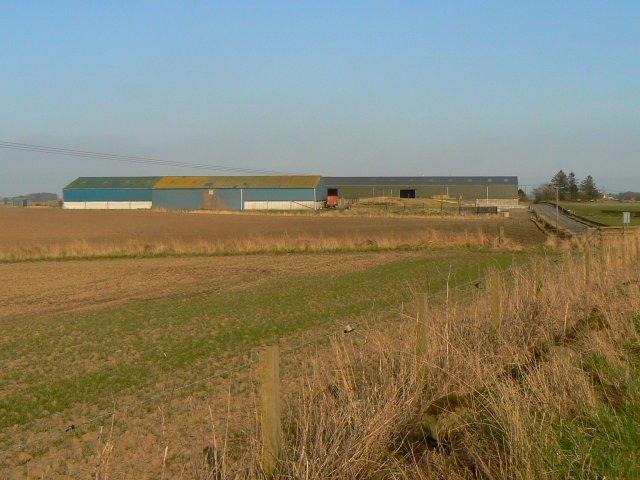 Lochty farm