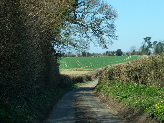 Nettlebeds Lane
