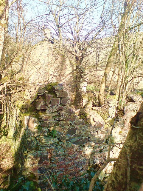 Mill ruin on the south eastern side of the footpath