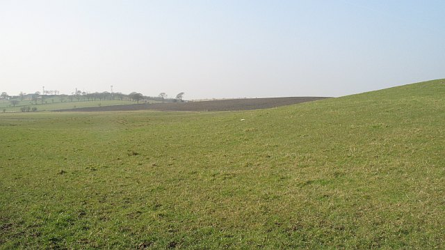 Grassland between the A8 and M8