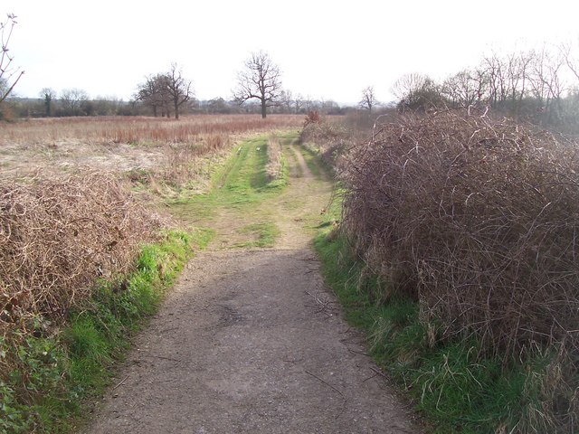 Footpath to Stone Castle Farm, Whetsted
