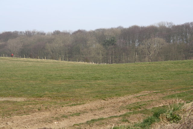 Danes Dyke From the Flamborough Road