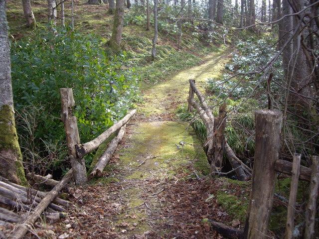 A rustic footbridge