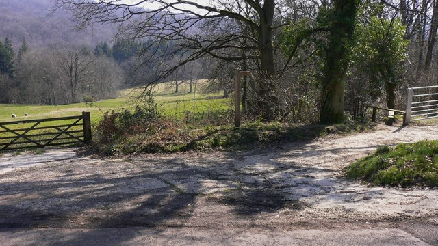 Footpath to Fernhurst