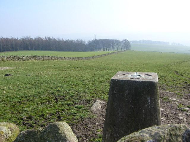 Warden Hill trig