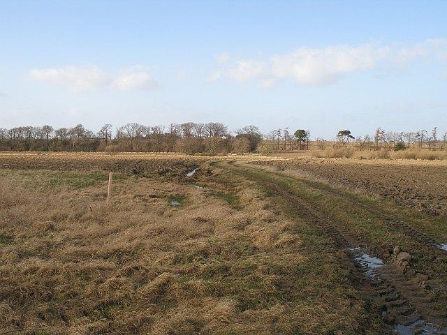 Farm track, Heathery Hall