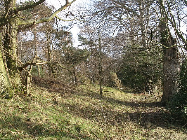 Woodland, Clerkington
