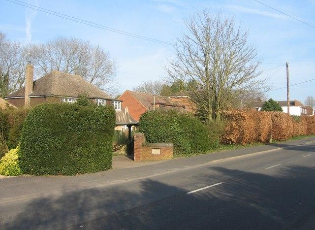 Houses along Pack Lane