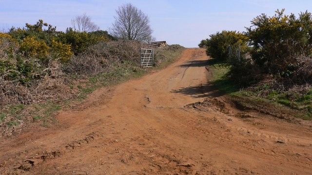 Track near Gosdens Heath
