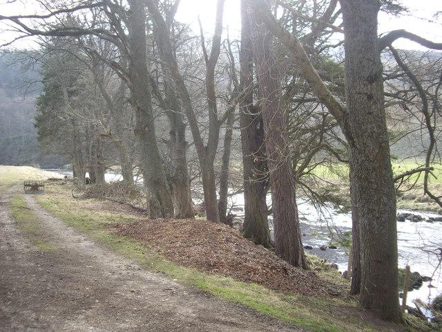 Downstream River Deveron