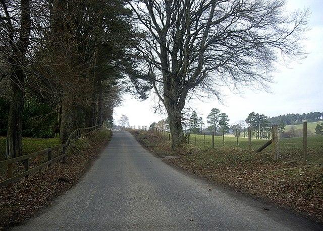 Road by Invermarkie Lodge