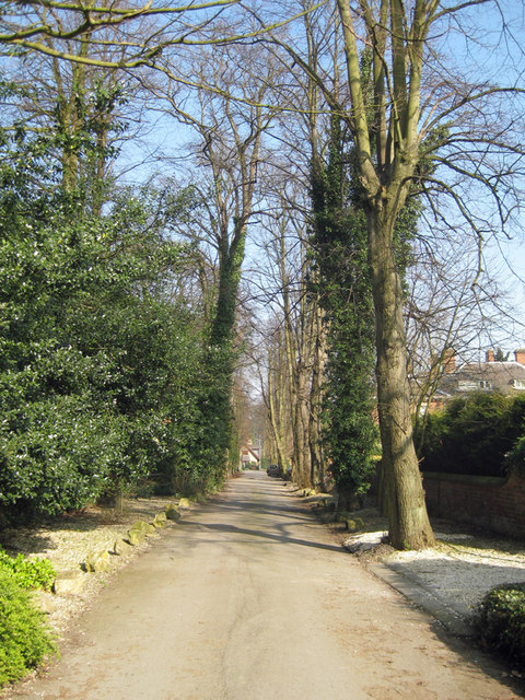 West Hill, Hessle