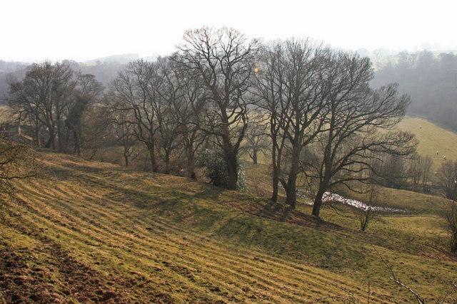 Soil creep in East Allendale