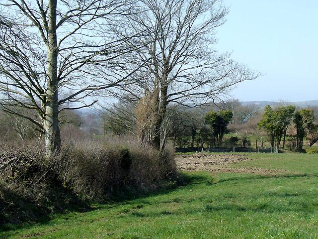 Farmland south-east of Llwyn-y-Groes, Ceredigion