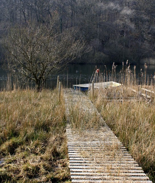 Boardwalk at Woodend Loch