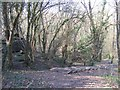 SO9780 : Steps on Monarch's Way Path in Twiland Wood by Roy Hughes