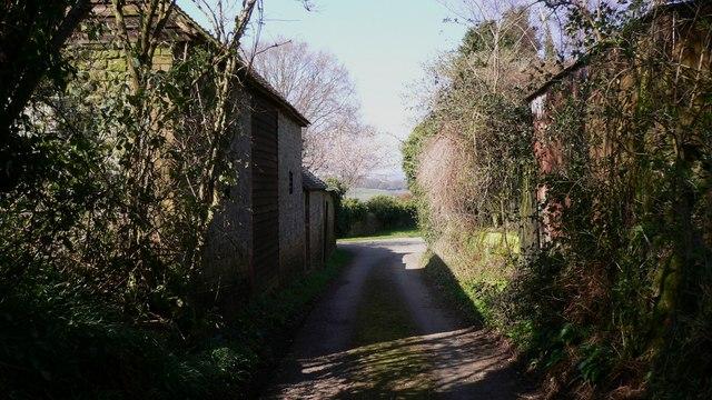 Janes Lane, River, West Sussex