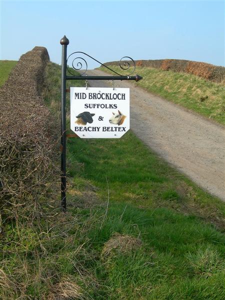 Mid Brockloch