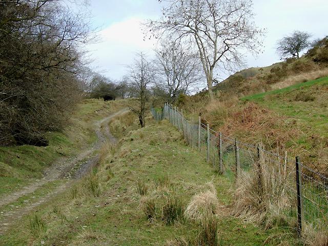 Trackway north of Cwrt-y-Cadno, Carmarthenshire