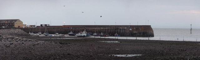Minehead : Minehead Harbour & Quay