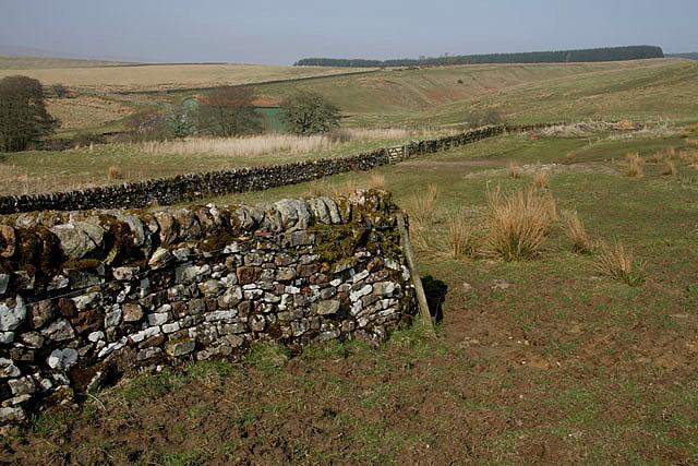 Farmland at Upper Larriston