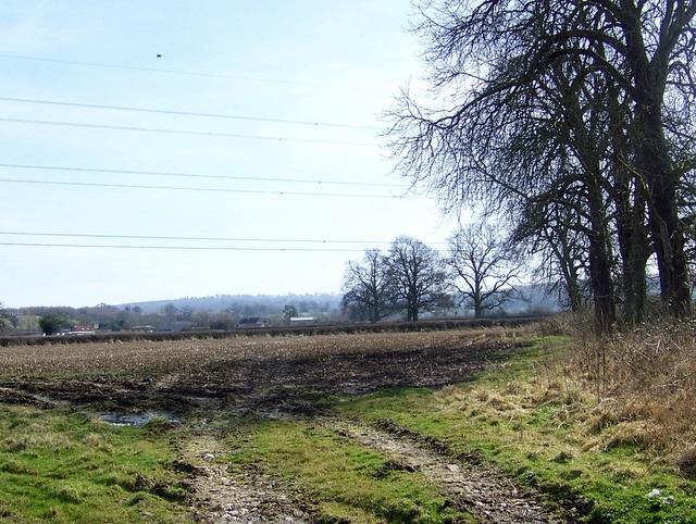 Footpath, Feltham Farm