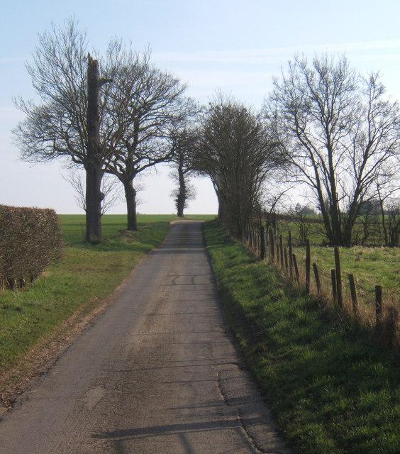 Looking along Clockhouse Lane