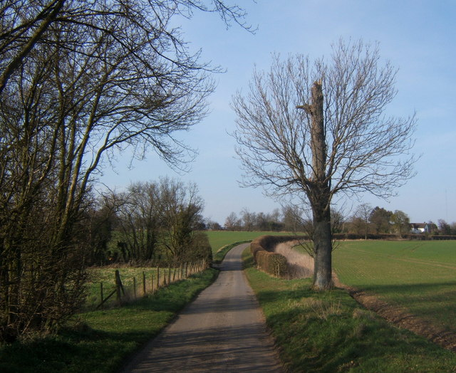 Clockhouse Lane, looking north