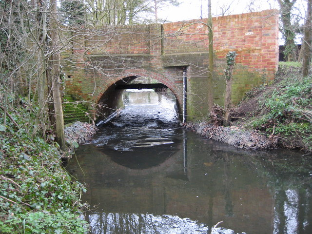 The Cut at Osbornelane Bridge, Newell Green