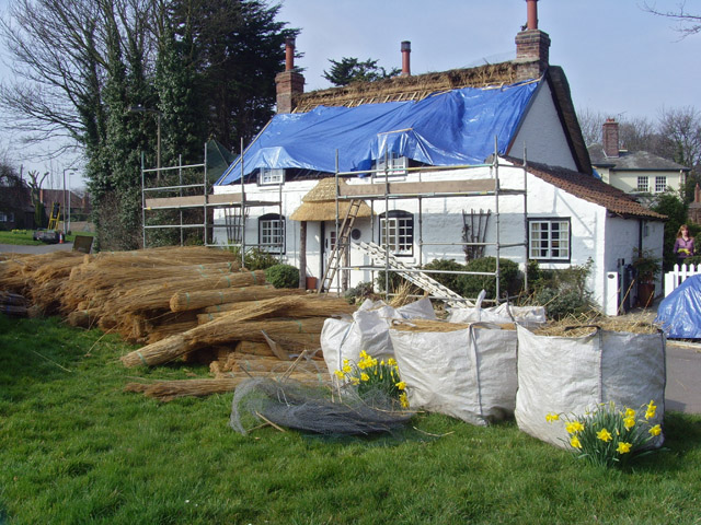 Thatching in Appleby
