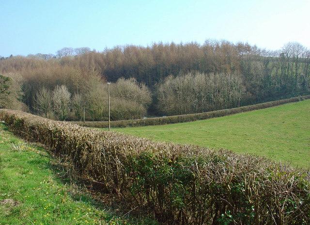 Dry valley near Pen-y-banc, Meidrim