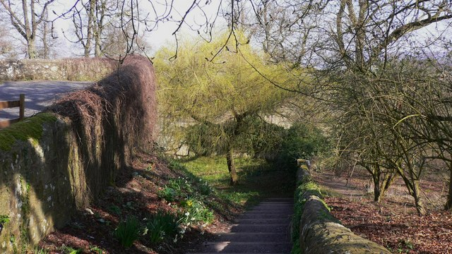 Steps from Upperton Road down to Petworth Park gate