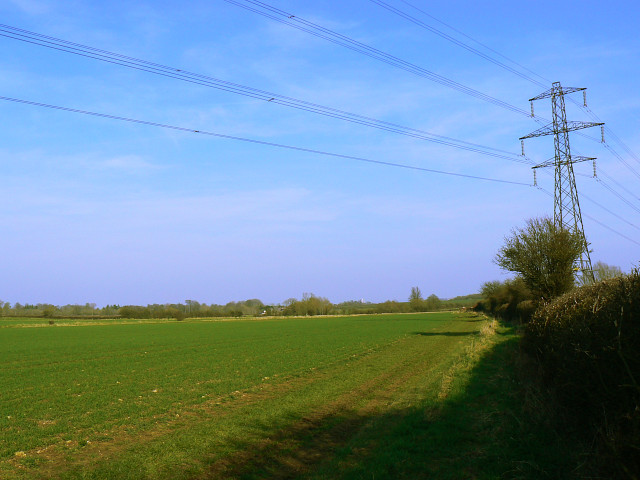 Footpath, farmland and pylon, Hook Street