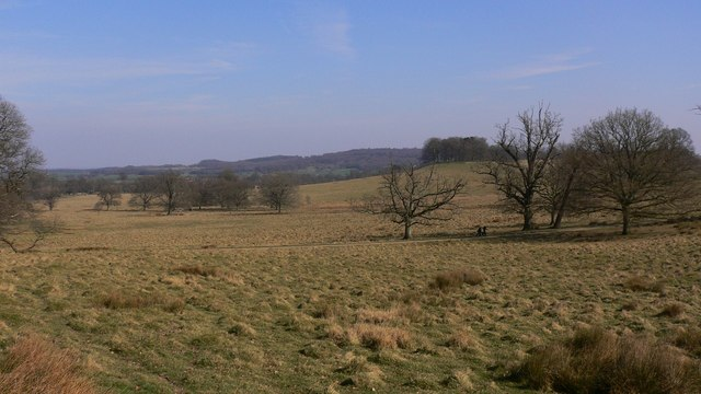 View east across Petworth Park