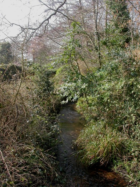 Highcliffe, Bure Brook