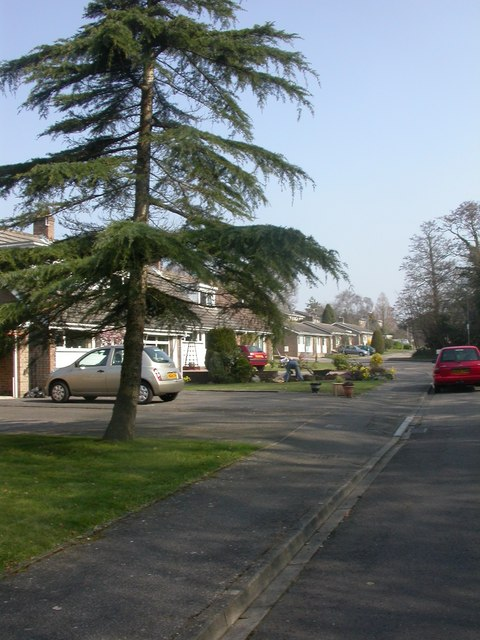 Highcliffe, bungalows