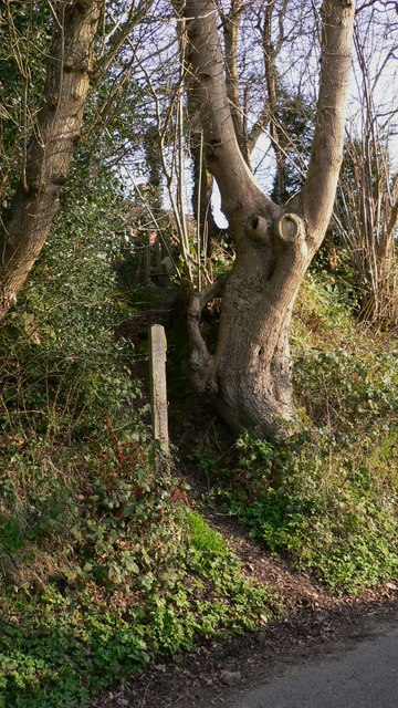 Steep footpath at River, West Sussex