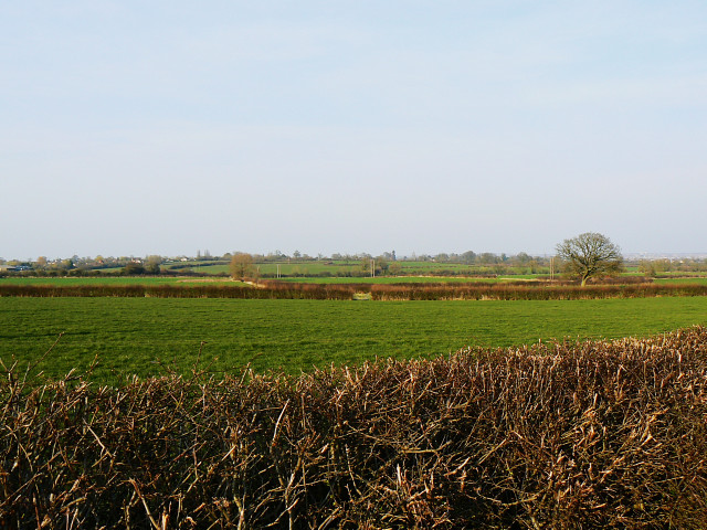 Fields near Hook