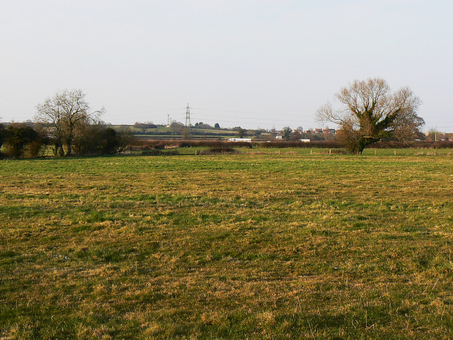 Field near Coped Hall